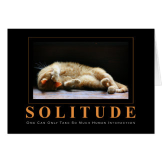SOLITUDE Cat Photography Anti-Motivational Card