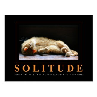 SOLITUDE Cat Photography Anti-Motivational Postcard