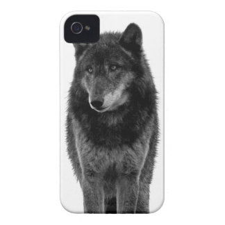 """Solitude"" iPhone 4 Case"