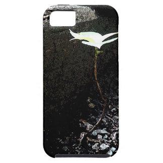 Solitude iPhone SE/5/5s Case