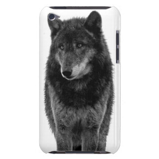 """Solitude"" iPod Touch Case"