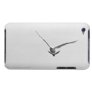 Solitude seagull over skyline Case-Mate iPod touch case