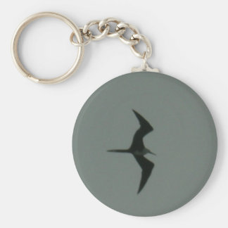 solo bird keychain