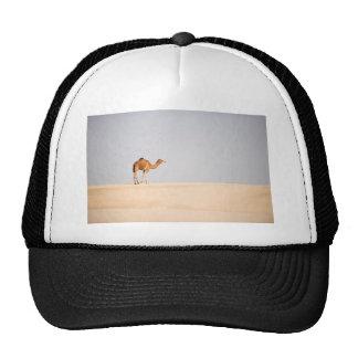 Solo camello en las dunas de arena árabes gorra