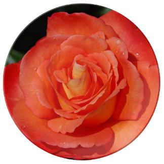 Solo color de rosa anaranjado plato de cerámica