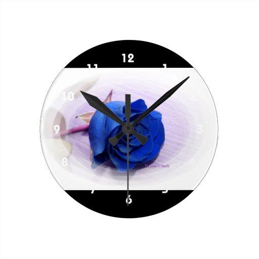 Solo color de rosa azul dentro de un capítulo oval relojes