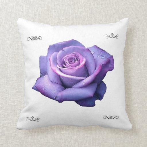 solo color de rosa púrpura cojines