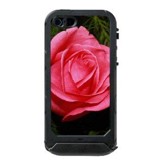 Solo color de rosa rosado carcasa de iphone 5 incipio atlas id