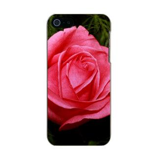 Solo color de rosa rosado carcasa de iphone 5 incipio feather shine