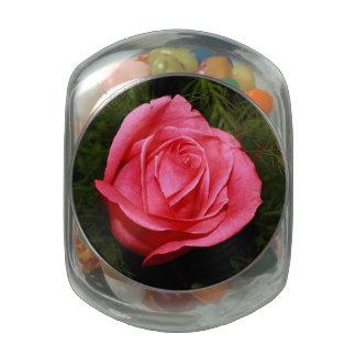 Solo color de rosa rosado frascos de cristal