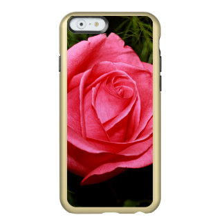 Solo color de rosa rosado funda para iPhone 6 plus incipio feather shine