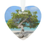 Solo Divi Divi Tree in Aruba Ornament