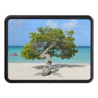 Solo Divi Divi Tree in Aruba Tow Hitch Covers