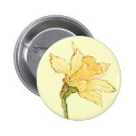 Solo ejemplo del narciso de Kate Greenaway Pins