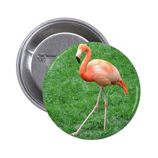 Solo Flamingo Pinback Button