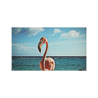 Solo flamingo vintage photo HFPHOT71 Canvas Print