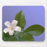 Solo flor blanco tapete de ratones