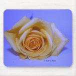 Solo fondo azul claro del rosa amarillo tapetes de ratones