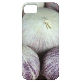 Solo Garlic iPhone SE/5/5s Case