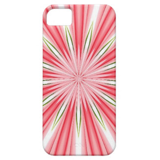 solo iPhone SE/5/5s case
