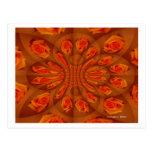 Solo modelo color de rosa anaranjado postal