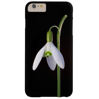 Solo Perfection Barely There iPhone 6 Plus Case