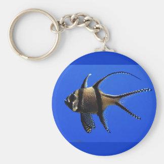 solo-pescado-en-acuario llaveros