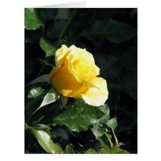 Solo rosa amarillo elegante y minimizado en Bloo Felicitaciones