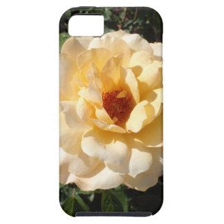 Solo rosa amarillo iPhone 5 Case-Mate coberturas