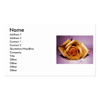 Solo rosa amarillo puesto en contraste contra la p tarjeta personal