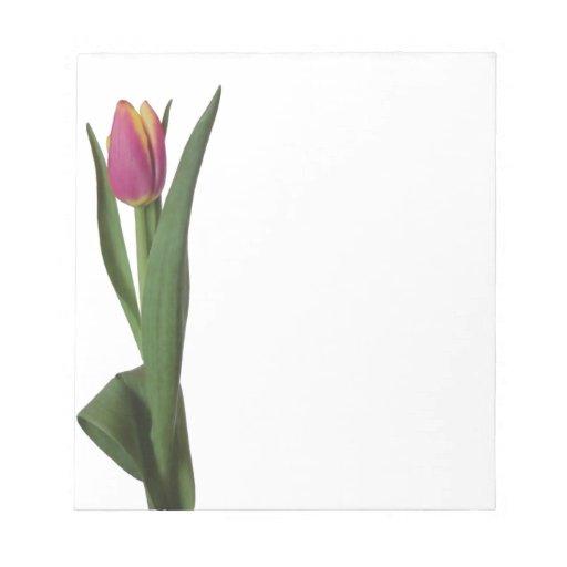 Solo tulipán rosado y amarillo bloc de notas