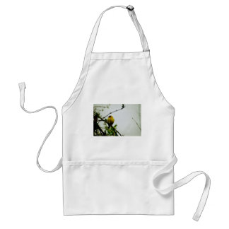 Solo Yellow Bird on Branch Adult Apron