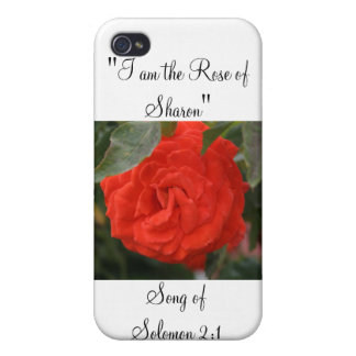 Solomon 2:1 Rose Of Sharon - Red Rose Designs Case For iPhone 4