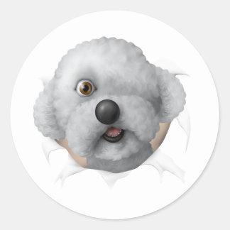 solomon chestburster round sticker