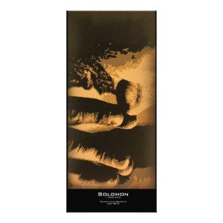 """Solomon"" Value Bookmark Rack Card"