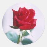 Solos pegatinas a juego del rosa rojo pegatina redonda