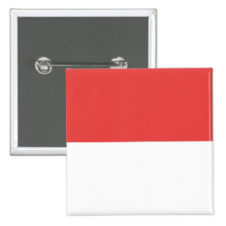 Solothurn province Switzerland swiss flag region Pinback Buttons