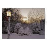 Solsticio de invierno tarjeton
