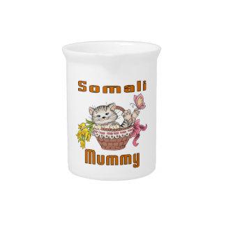 Somali Cat Mom Pitchers