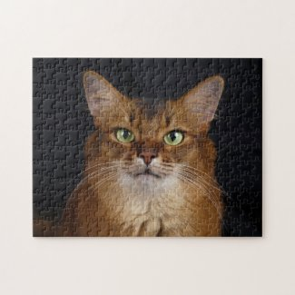 Somali Cat Photo Portrait Jigsaw Puzzle