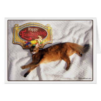 Somali Cat Thanksgiving Card