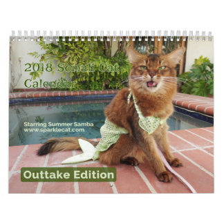 Somali Cat, with Summer Samba Outtake Edition 2018 Calendar