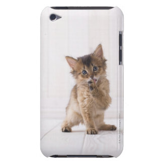 Somali Licking Forefoot iPod Touch Case-Mate Case