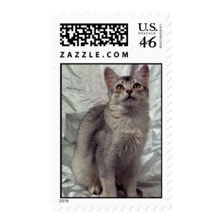 Somali silver stamps