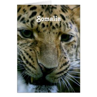 Somalia Tarjeta