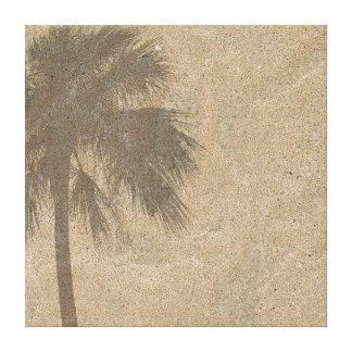 Sombra de la palmera en el fondo de la arena de la lona envuelta para galerias