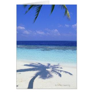 Sombra de la palmera tarjeta de felicitación