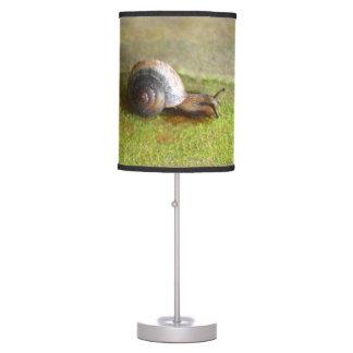 Sombra de lámpara que muestra una fotografía de un