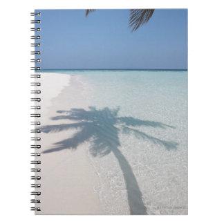 Sombra de una palmera en una playa abandonada de l libreta espiral