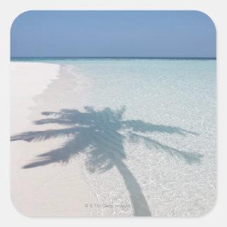 Sombra de una palmera en una playa abandonada de calcomanías cuadradass personalizadas